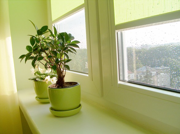 A lakásbiztosítás egyik legfontosabb része az üvegkár